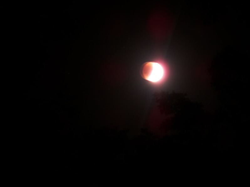 Super Harvest Blood Moon Eclispe