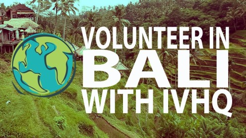How I plan to volunteer in Bali with IVHQ!
