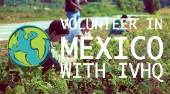 VolunteerMexico