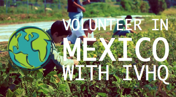 Volunteer in Mexico With IVHQ!