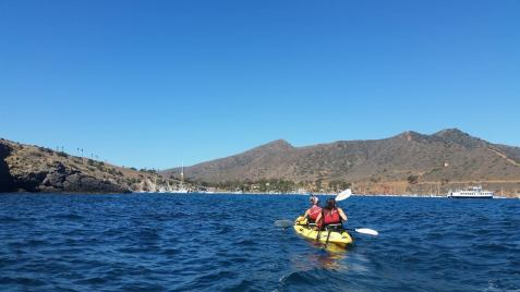 Kayaking in the ocean one afternoon