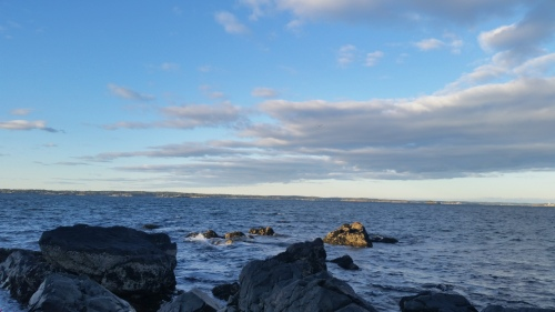 Chandler Hovery Park, Marblehead, MA