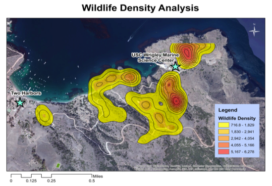 This map is a hot spot density analysis, which was created by clustering together the point and line data to create polygon areas to show where the mammalian species are most likely to be found/seen based on our field data.